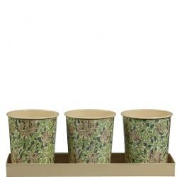 Kovové květináče na bylinky William Morris Honeysuckle