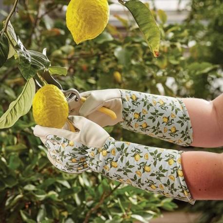 Dámské kožené rukavice dlouhé - lemon